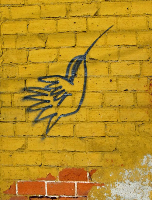 griffitoed hummingbird on a yellow wall - photo